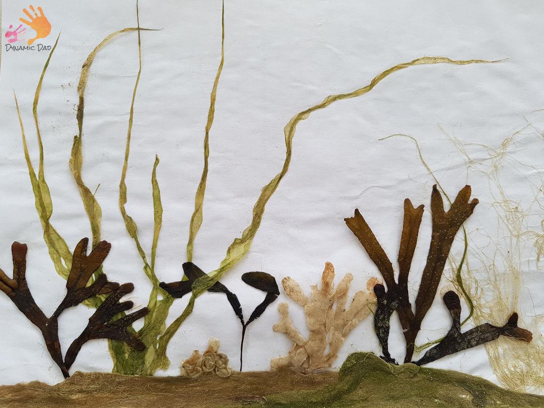 Completed Seaweed Print - Seaweed Prints - Dynamic Dad
