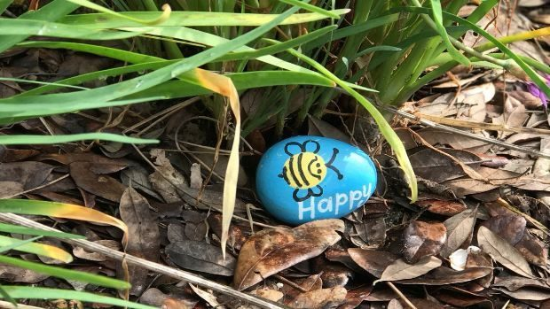 Happy rock in flower bed - Rock Hunting - Dynamic Dad