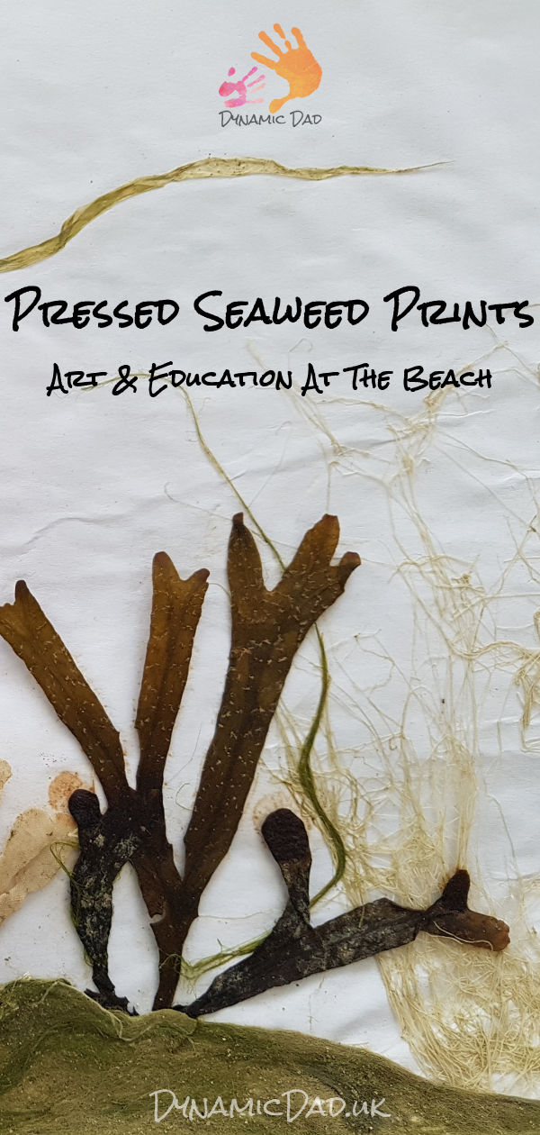 Pressed Seaweed Prints - Dynamic Dad