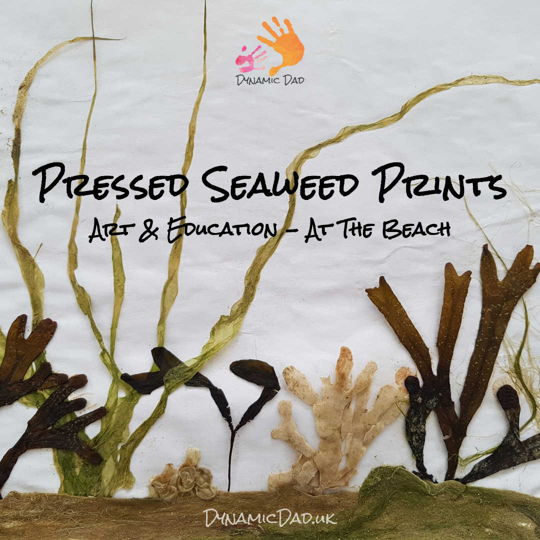 Seaweed Print - Seaweed Prints - Dynamic Dad