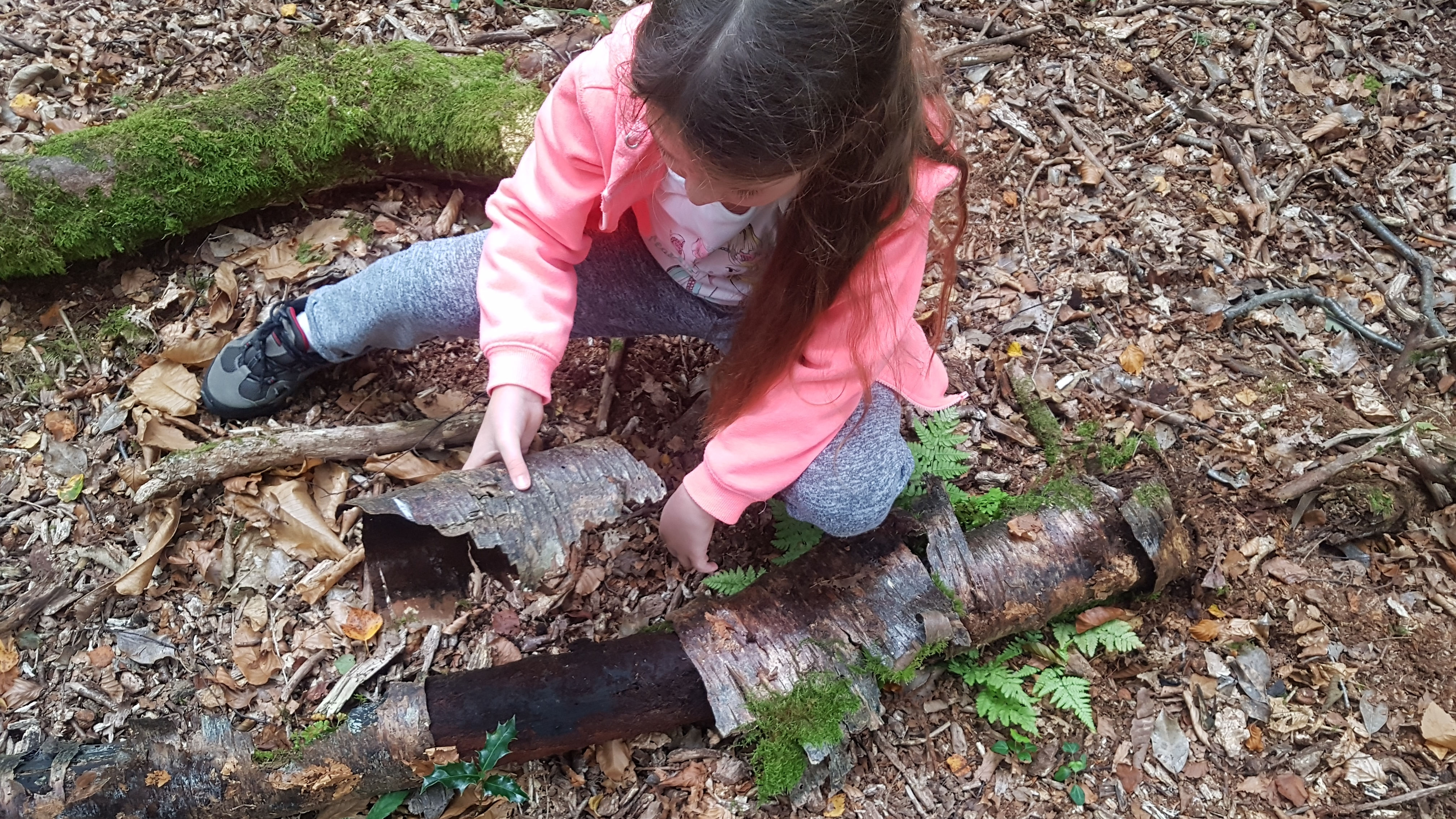 Collecting bark - how to make a fairy house - dynamic dad
