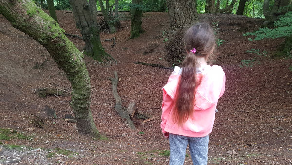 Surveying the woods - how to make a fairy house - dynamic dad